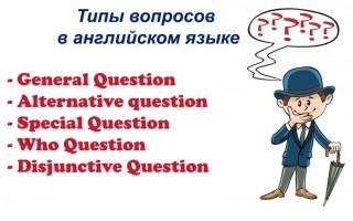 Типы вопросов в английском языке: правила, особенности, примеры