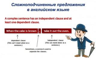 Сложноподчиненные предложения в английском языке: как строятся, примеры, союзы