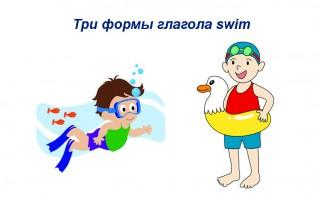Три формы глагола swim — грамматика, перевод, примеры предложений