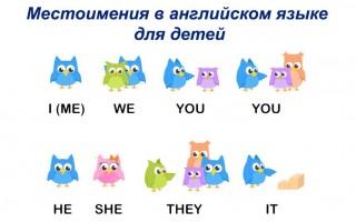 Местоимения в английском языке для детей: учим язык в картинках и изображениях