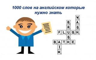 1000 слов на английском языке, которые нужно знать начинающим