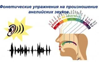 Фонетические упражнения на произношение английских звуков для начинающих