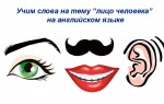Карточки на тему «Лицо человека» на английском языке