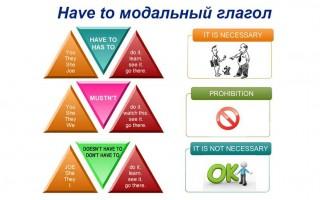 Have to модальный глагол: значение, схемы и случаи применения