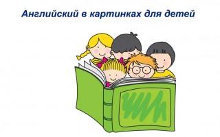 Английский в картинках для детей: изучаем лексику первостепенной важности