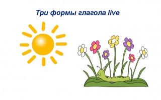 Три формы глагола live — значение и русский перевод, примеры предложений