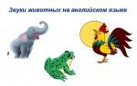 Звуки животных на английском — учим новые слова и узнаем новое