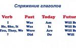 Спряжение глаголов в английском языке: правила, особенности с примерами