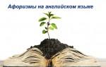 Афоризмы на английском языке: фразы о жизни, успехе, природе, учебе