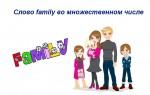Как будет во множественном числе слово family — правописание, примеры