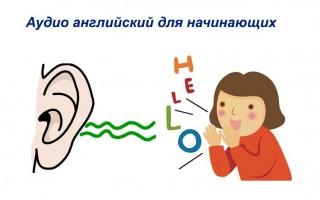 Аудио английский для начинающих: курсы и преимущества методики