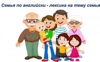 Семья по английски — лексика на тему семья и все, что с этим связано