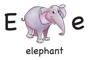 Карточка на английском elephant