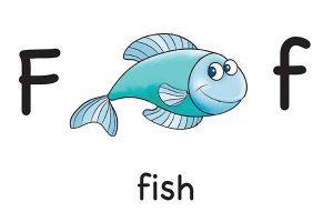Карточка на английском fish