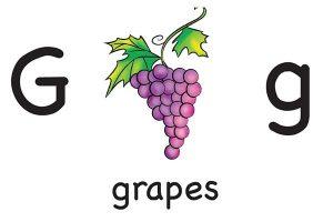 Карточка на английском grapes