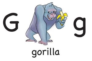 Карточка на английском gorilla