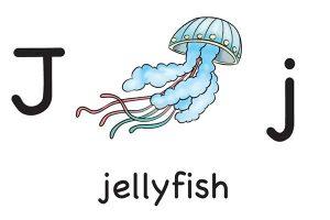 Карточка на английском jellyfish