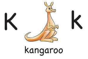 Карточка на английском kangaroo