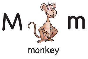 Карточка на английском monkey