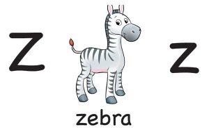 Карточка на английском zebra