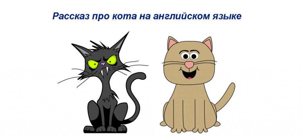 Рассказ про кота на английском языке с переводом