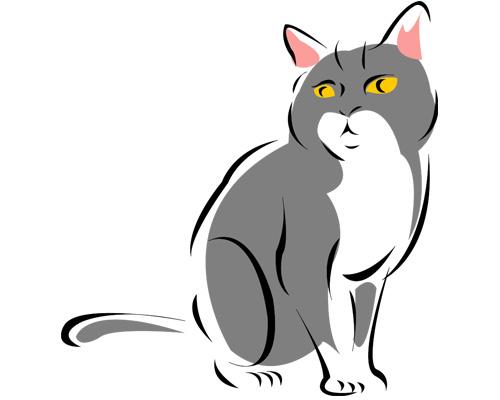Кошка или кот по-английски - a cat