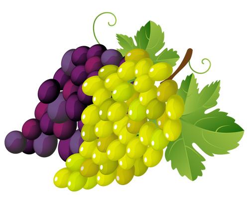 Ягоды, виноград по-английски - grapes [greɪps]