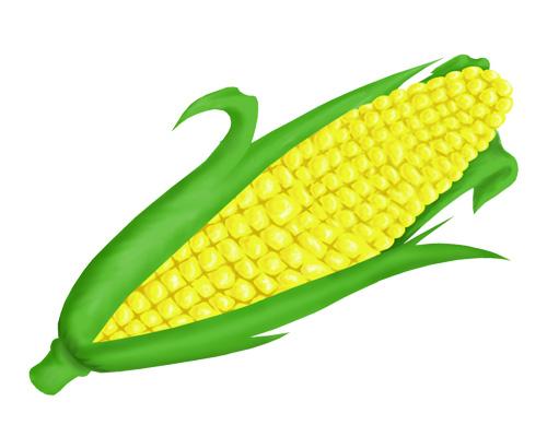 Початок кукурузы по-английски - corn cob