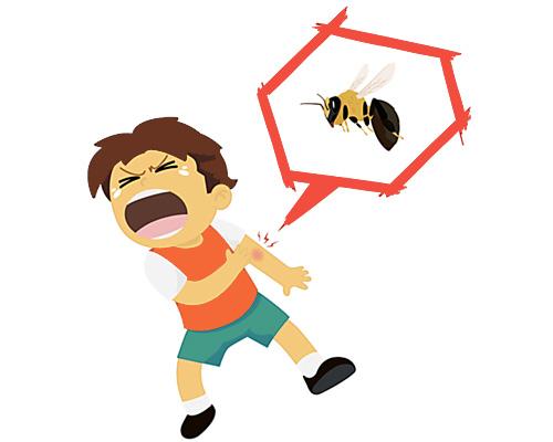 Его ужалила пчела - по английски говорится He's been stung
