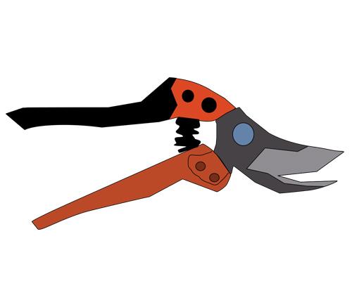 Секатор или садовые ножницы по-английски - secateur [sekəˈtɜː]
